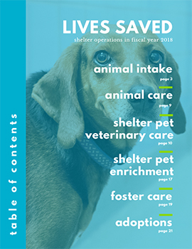 Annual Report 2018 Lives Saved