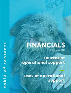 Annual Report 2018 Financials