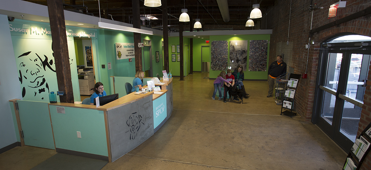 wide view of the lobby of the Susan M. Markel Veterinary Hospital showing reception desk and waiting area