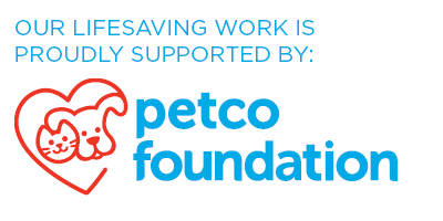 Petco-Foundation-Site-Badge-White.png