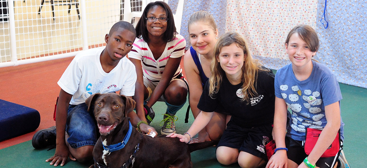 middle-school aged children surround a smiling chocolate lab