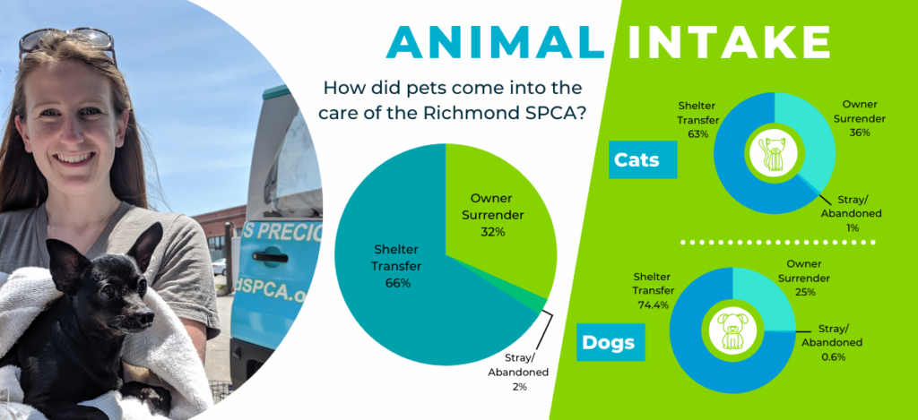 Pie charts show how pets came into the care of the Richmond SPCA during FY19