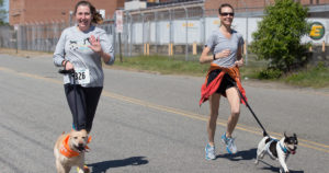 Two women running with leashed dogs