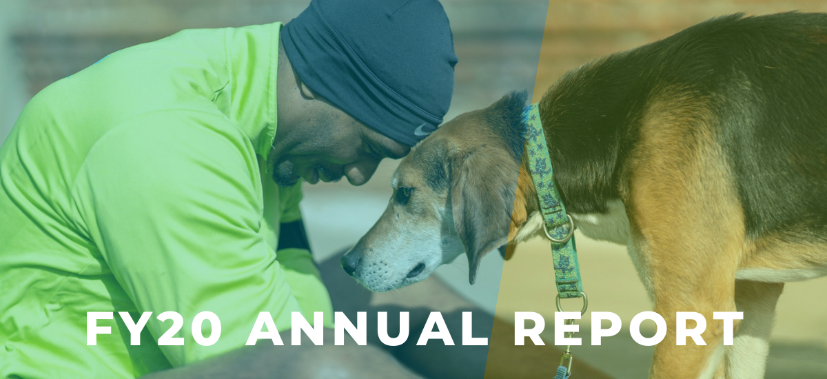 FY20 Annual Report cover image: Stephen Carter and Harold the hound